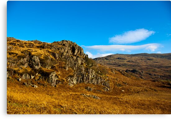 Colours of Autumn in the Duddon Valley by Trevor Kersley