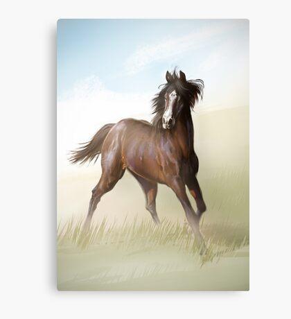 Horsey Canvas Print