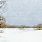 After snowfall by Sergei Kurbatov