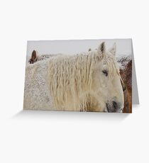 Knight of Dreams First Snow Greeting Card