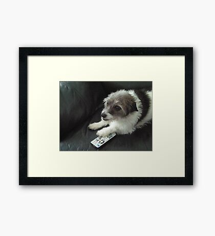 Don't you dare take that channel changer. Framed Print