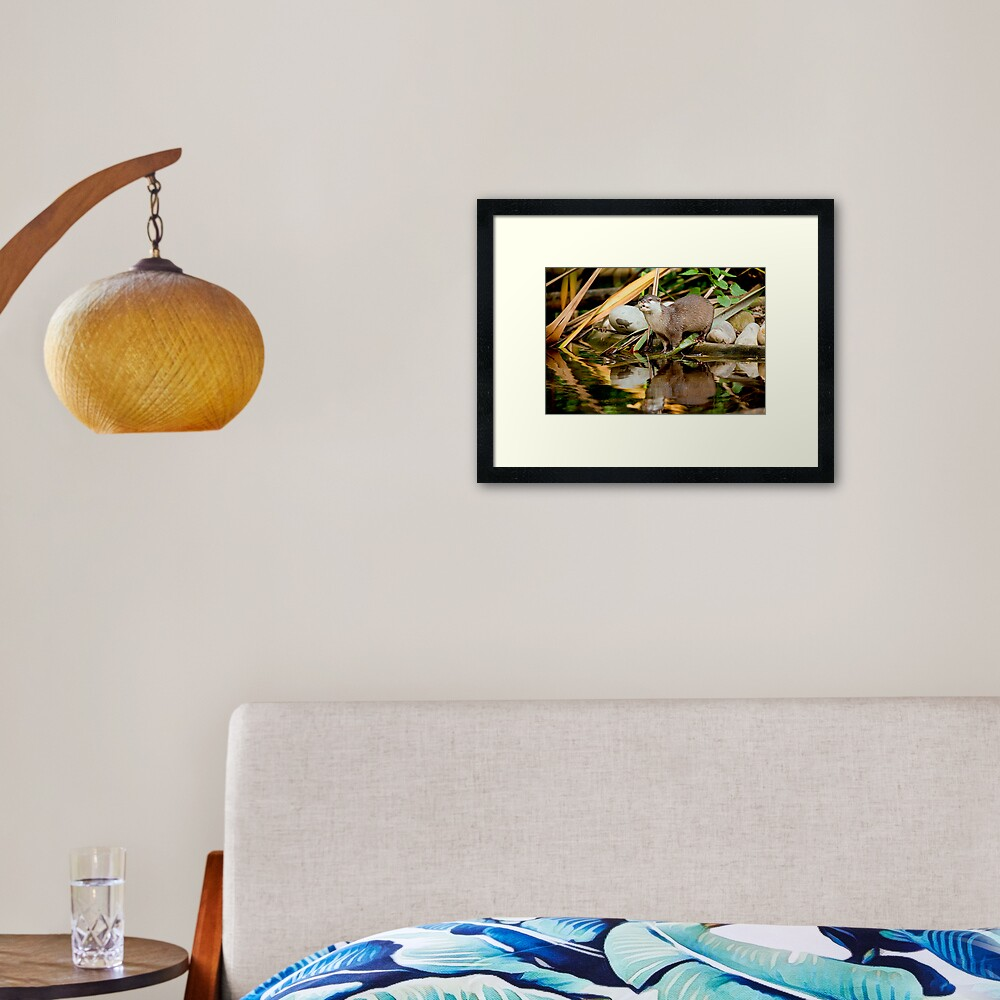 Oriental Small-clawed Otter Framed Art Print