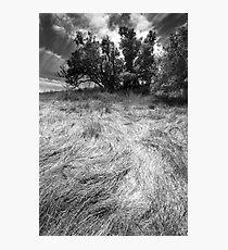 brush stroke Photographic Print