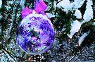 Christmas Beauty by Tori Snow