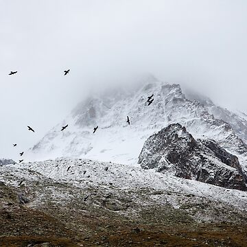 Pájaros de montaña de Orce