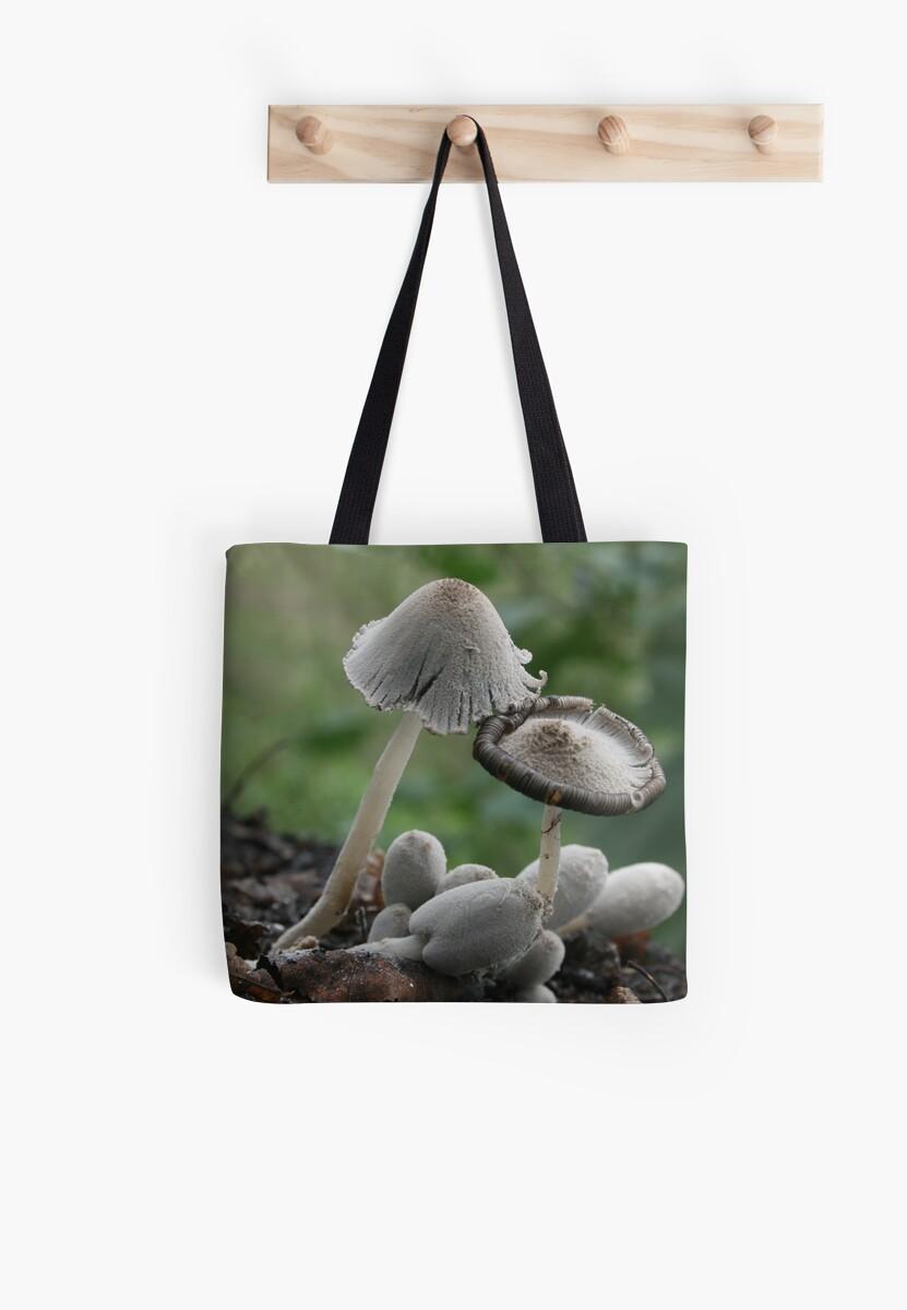 Inky Cap mushrooms by LaBud