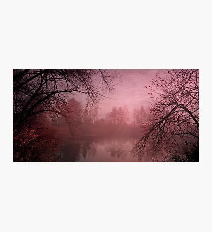 Misty morning light Photographic Print