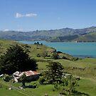 Old farmhouse, Banks Peninsula, South Island, NZ. by johnrf