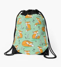 Dreamy Fox in Green Drawstring Bag