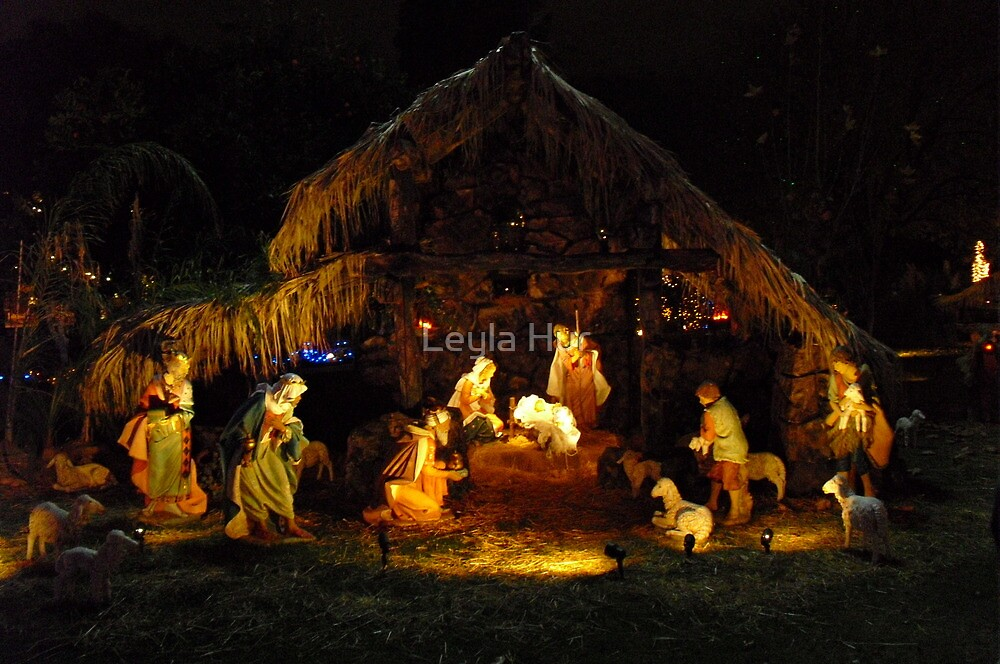 The Nativity by Leyla Hur