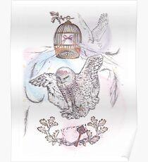 Owl Mail - Art Poster
