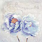 Bonjour Belle Parisian floral pastel peonies by Glimmersmith