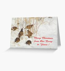 Quail Covey in the Snow Greeting Card
