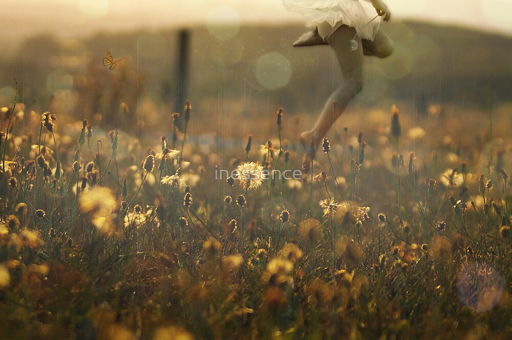 Field Of Past Wishes by inessence