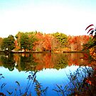 West Shore Currahee Lake by Chelei