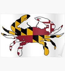 Maryland Flag Crab Poster
