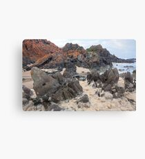 Natural froth, Chris Bell Canvas Print