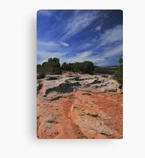 Earth Trees And Sky Canvas Print