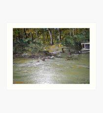 Murray river Art Print