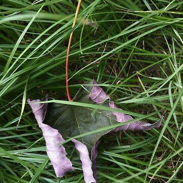 Leaf behind by Anitajuli