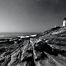 Pemaquid Point; 2 by Tania Palermo