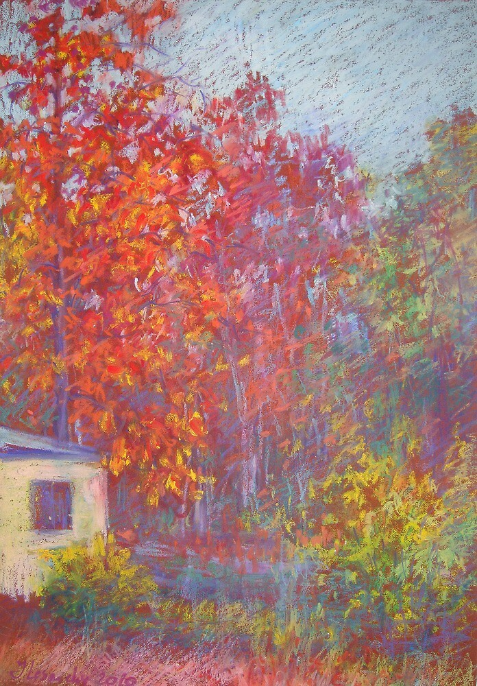 Fall trees before sunset by Julia Lesnichy
