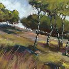 Birch Trees, Hathersage Moor by Sian Vernon