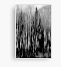 Blurred  Canvas Print