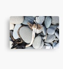 Driftwood Angel Canvas Print