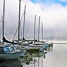 Moored Boats by Kathleen Jones