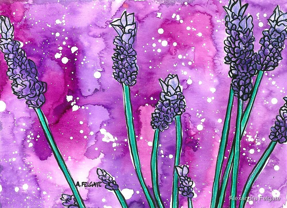 Lavender by Alexandra Felgate