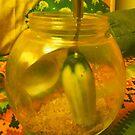C cucumber? by D. D.AMO