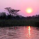 Kwando Sunset - Africa by Beth  Wode