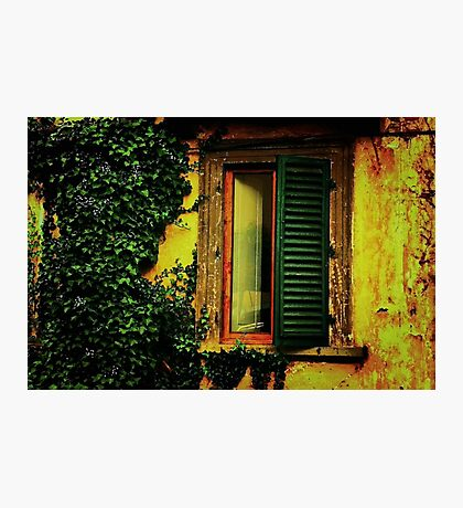 Old World Window Photographic Print