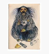 Marmoset of Mediocrity Photographic Print