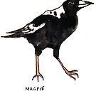 Magpie by Zoe Sadokierski