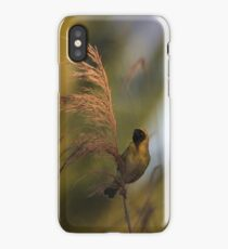 Southern Masked-Weaver iPhone Case/Skin