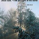 I am the Light by Lorrie Davis