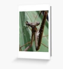 Just One Touch, Thanks Greeting Card