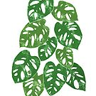 Monstera Adansonii Tropical Houseplant Hand-Painted Art by Chee Sim