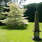 Memorial, Tichbourne Garden Christchurch, NZ by johnrf
