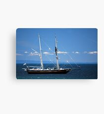 Young Endeavour Canvas Print