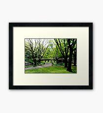 Central Park, New York in Spring Framed Print