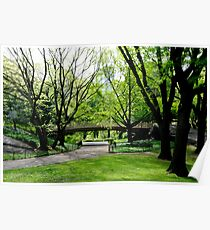 Central Park, New York in Spring Poster