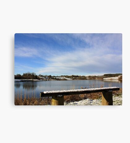 The Best Seat Canvas Print
