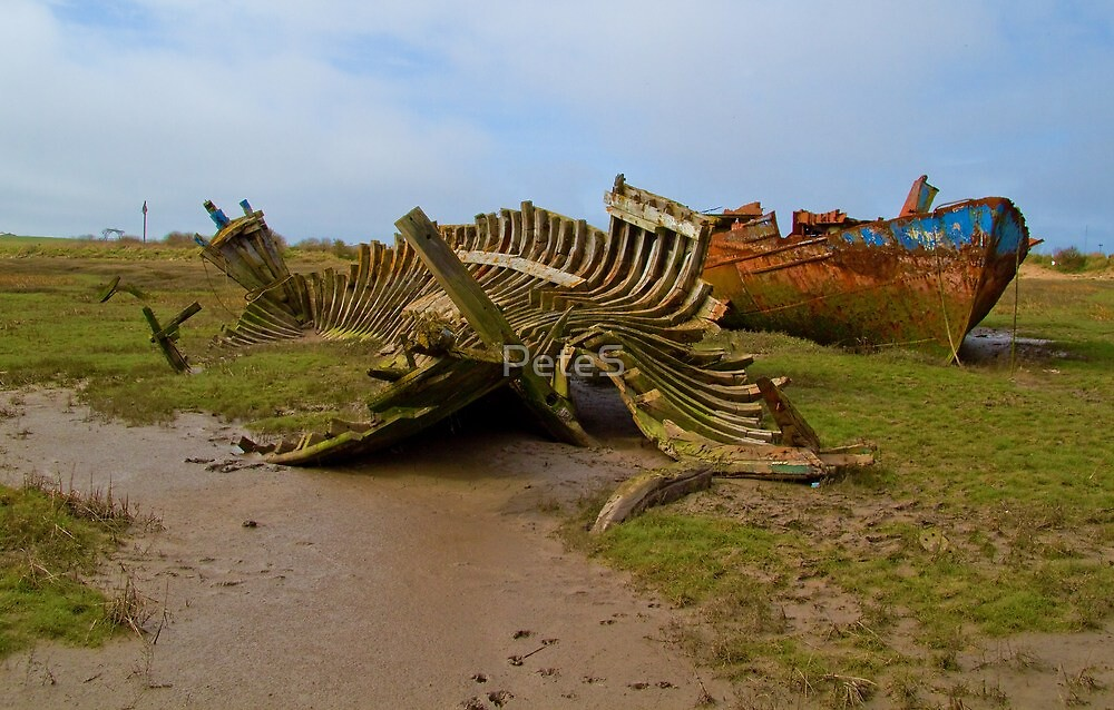 Ribs and Rust by Peter Stone
