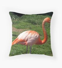 Pretty in Pink - Flamingo Throw Pillow