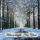 Lane Through Snowy Woods - Bright New Year by steppeland
