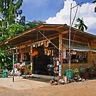 Rural Store by Dave Lloyd