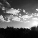 Dunes by LockwoodEcho